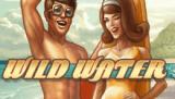 Игра онлайн Дикая Вода