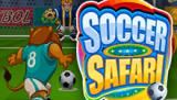 Футбольное Сафари в Вулкан Удачи онлайн